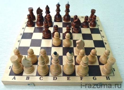 Шахматы Турнирные деревянные